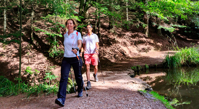 A Beginners Guide To Nordic Walking