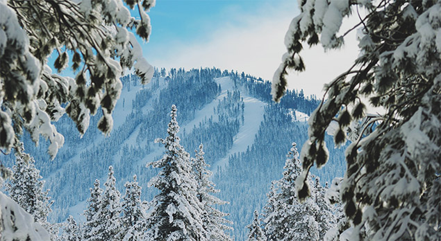 Which Ski Resorts Have Received Early Season Snow