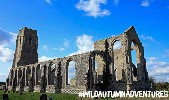 Wild Autumn Adventures: Ruins & Walks Of London And The South East
