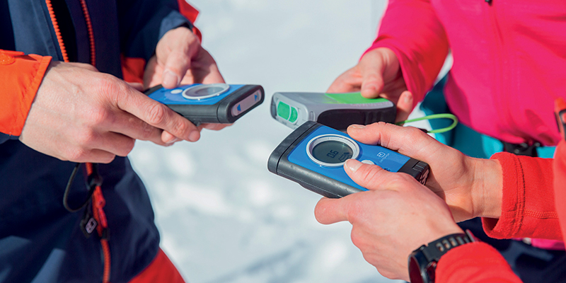 Discover Backcountry Tamworth Beeper