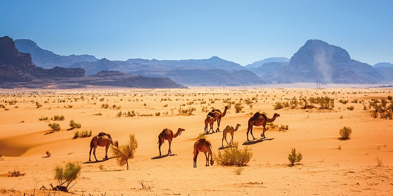 Jordan WadiRum desert